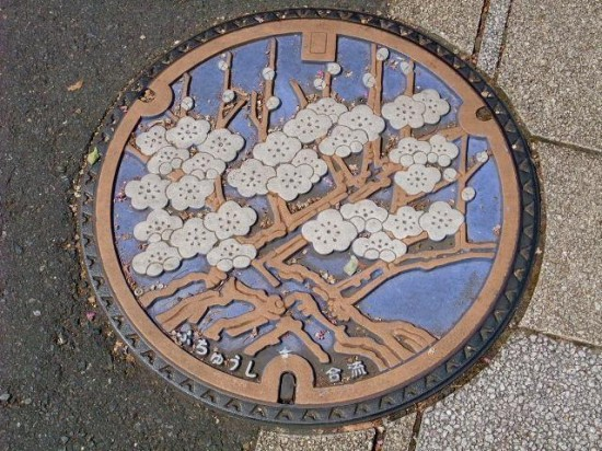 Cherry-Blossoms-by-Tokyo-Five-550x412